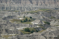 Islands of green, Badlands National Park SD